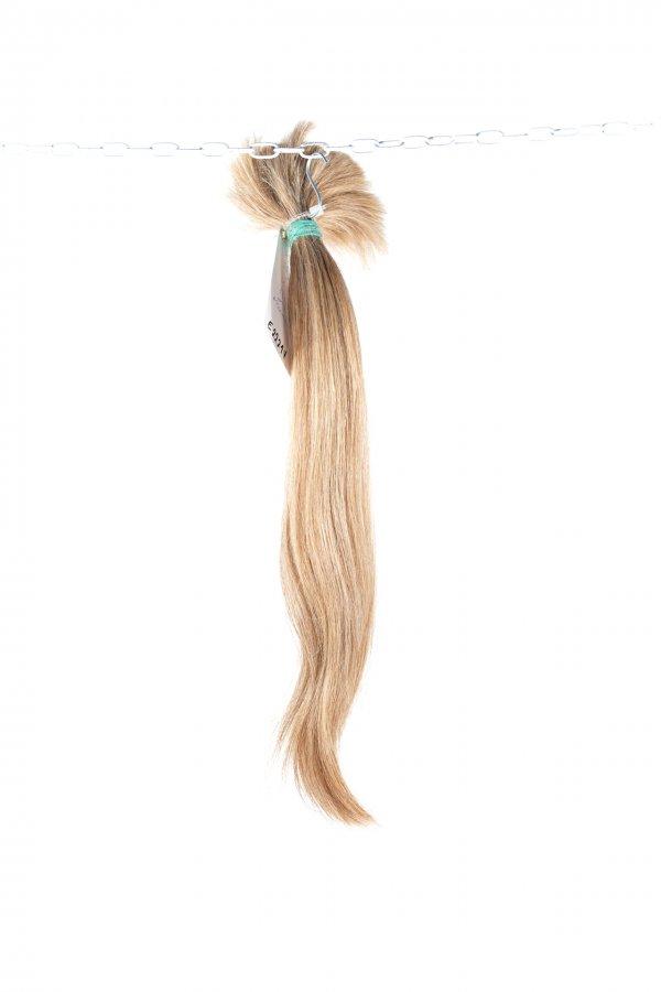 České vlasy blond odstín